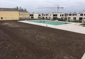 Arreglo jardineria y piscina